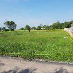 Bán khu đất vườn có thổ cư ấp Cây Da, xã Tân Phú Trung, huyện Củ Chi
