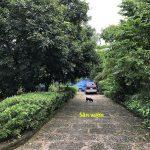 Bán nhà mặt tiền sông Sài Gòn & Tỉnh lộ 15 xã Nhuận Đức, Củ Chi