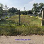 Khu Đất thổ cư, 2 mặt tiền đường nhựa Ấp 3, xã Tân Thạnh Tây, huyện Củ Chi